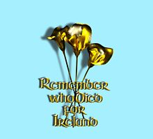 Remember who Died for Ireland Women's Fitted Scoop T-Shirt