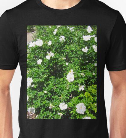 White Rose Bush Unisex T-Shirt