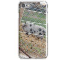 Around-the-World Animals Collection #7 iPhone Case/Skin