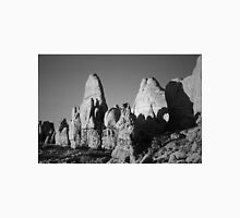 Arches NP II BW Unisex T-Shirt