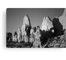 Arches NP II BW Canvas Print