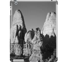 Arches NP II BW iPad Case/Skin