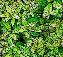 Plant Texture by Nicolas Raymond