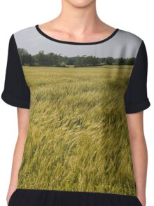 Golden Wheat Harvest, Ripening In The Wind Chiffon Top