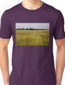 Golden Wheat Harvest, Ripening In The Wind Unisex T-Shirt