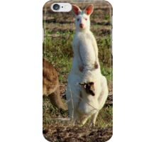 Mum, Junior and Joey in a Sugarcane Field (please view larger) iPhone Case/Skin