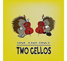 two cellos Photographic Print