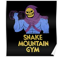 snake mountain gym Poster