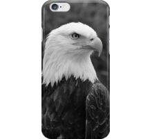 Head of a Male American Bald Eagle iPhone Case/Skin