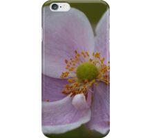 Pretty Pink Flower iPhone Case/Skin