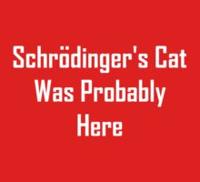 Schrodinger's Cat Was Probably Here Baby Tee