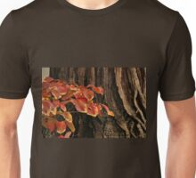 Color and Texture Unisex T-Shirt