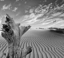 Landscape Tarifa by carlosandesther photographic