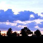 Sunset at Childwickbury by JohnYoung