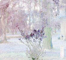 Park in Winter by Anivad - Davina Nicholas