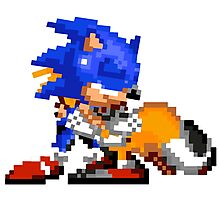 Sonic and Tails - Hugs Photographic Print