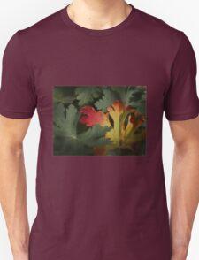 Design in Autumn Colours Unisex T-Shirt
