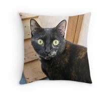 Tortoiseshell Throw Pillow