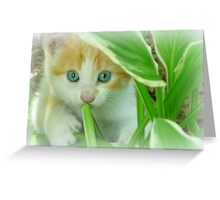 Playing Hide and Seek Greeting Card