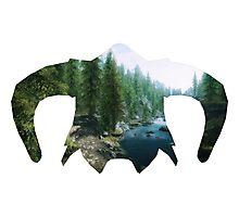 Elder Scrolls - Helmet - Greenery Photographic Print