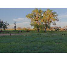 Grasslands at Golden Hour Photographic Print