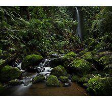 Leith Valley Waterfall Photographic Print