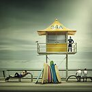 The life guard by Adrian Donoghue