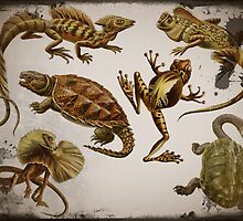 Prehistoric Reptiles by dianegaddis