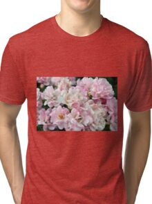 Beautiful small light pink flowers in the garden. Tri-blend T-Shirt