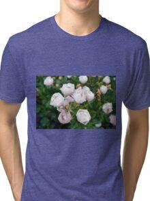 Beautiful small light pink flowers in the garden. Tri-blend T-Shirt
