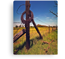 """ Devil`s Rope "" Canvas Print"