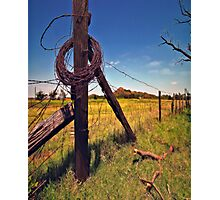 """ Devil`s Rope "" Photographic Print"