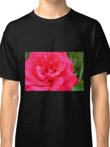 Macro on pink rose. Classic T-Shirt