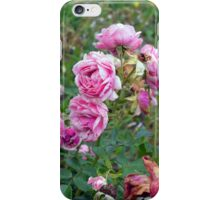 Colorful flowers in the garden. iPhone Case/Skin
