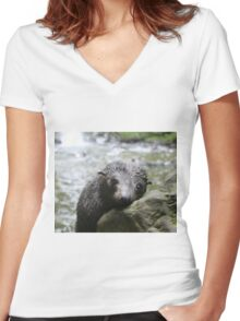 Seal pup daydreams Women's Fitted V-Neck T-Shirt