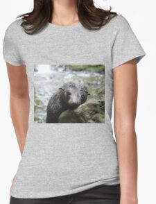 Seal pup daydreams Womens Fitted T-Shirt