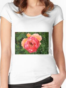 Close up on red and yellow roses. Women's Fitted Scoop T-Shirt