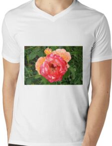 Close up on red and yellow roses. Mens V-Neck T-Shirt
