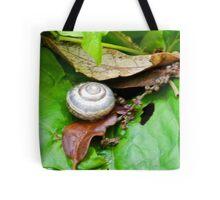 A tiny Snails abode.........Dorset UK Tote Bag