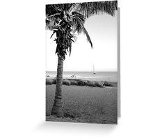 Palm Beach 2 Greeting Card