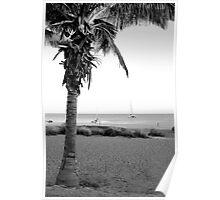 Palm Beach 2 Poster