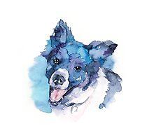 DOG#15 Photographic Print