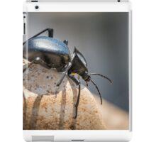 Black beetle number 1 iPad Case/Skin