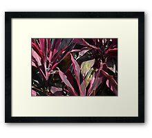 purple leaf Framed Print