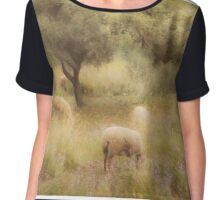 Sheep grazing in the Spanish countryside. II Chiffon Top