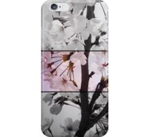 Blossom triptych iPhone Case/Skin