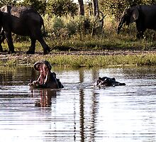 Hippos and Elephants by Marylou Badeaux