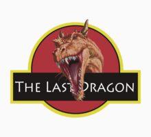The last dragon by debi123
