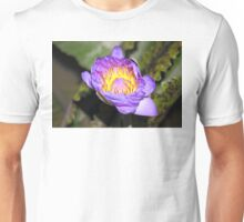 Oil Painting of Open Water Lily Blossom Unisex T-Shirt