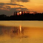 sunset by the lake by craig wilson